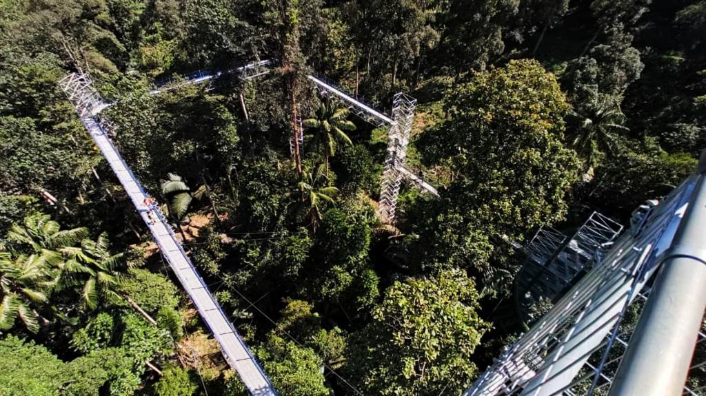 Forest Skywalk FRIM